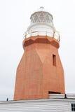 Długa punkt latarni morskiej wrony głowa NL Kanada obraz stock