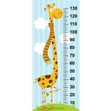 Długa szyi żyrafy wzrosta miara Obrazy Stock