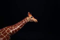 Długa szyja odizolowywająca na czerni żyrafy zabawka Obrazy Stock