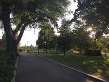 Długa ulica w parku fotografia stock
