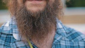 Długi brody i wąsy mężczyzna zbiory