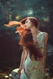 Długi czerwony podmuchowy włosy fotografia stock