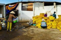 Długi Hai Wietnam, Dec, - 29, 2014: Ludzie ` s życia codziennego, wioska rybacka z mnóstwo ryba w połowu koszu przy tradycyjnym Zdjęcia Stock