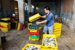 Długi Hai Wietnam, Dec, - 29, 2014: Ludzie ` s życia codziennego, wioska rybacka z mnóstwo ryba w połowu koszu przy tradycyjnym Obraz Royalty Free