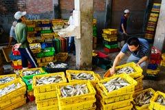 Długi Hai Wietnam, Dec, - 29, 2014: Osoby życie codzienne, wioska rybacka z mnóstwo ryba w połowu koszu przy tradycyjnym Zdjęcie Royalty Free