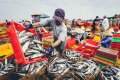 DŁUGI HAI, WIETNAM - 03 2016 LIPIEC: Rybi sprzedawcy w Długim Hai rynku przygotowywają morskiej ryba dla ranku rynku Zdjęcia Royalty Free