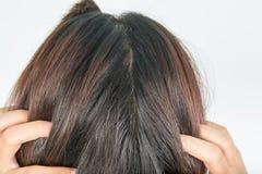 Długi i gęsty włosy kobiety obrazy royalty free