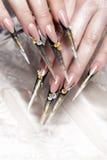 Długi piękny manicure z kwiatami na żeńskich palcach Gwoździa projekt Zakończenie obraz stock