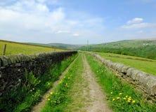 Długi prosty kraju pas ruchu z suchymi kamiennymi ścianami otaczać zielonym paśnikiem z wildflowers w pięknym wczesnego lata świe Zdjęcie Stock