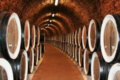 długi rzędów tuns winograd fotografia stock