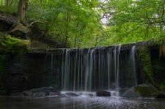 Długi ujawnienie mała siklawa w ustronnej roztoce z bujny zieleniami i mech zakrywać skałami fotografia royalty free