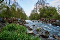 Długi ujawnienie od unosić się, idylliczna rzeka z kamieniami i trawa w przedpolu, zdjęcie royalty free