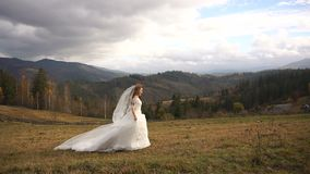 Długi widok powabna elegancka panna młoda szczęśliwie biega wzdłuż złotej łąki w w długiej sukni zbiory