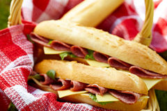 Długie baguette kanapki z salami i serem zdjęcie royalty free