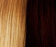 długie włosy fryzury Włosiany salon Kobieta z zdrowym włosy obrazy stock