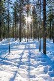 Długiego cienia krzyża śniegu głębocy dryfy fotografia stock