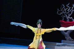 """Długiego rękawa tana cesarski harem lub Jiangxi opera """"Red pearl† Zdjęcia Stock"""