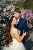 Długość portret piękni powabni nowożeńcy blisko liliac krzaków Obraz Stock