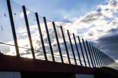 Dźwiękochłonny szkło ekran wzdłuż drogi w centrum miasta Czerń kontury ptaki na szkle Tło Zdjęcie Stock