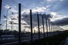 Dźwiękochłonny szkło ekran wzdłuż drogi w centrum miasta Czerń kontury ptaki na szkle Tło Obrazy Royalty Free