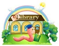 Dżdżownica jest ubranym skalowanie nakrętki czytanie przed biblioteką Obraz Royalty Free
