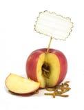 Dżdżownica przychodzi z jabłka Fotografia Stock