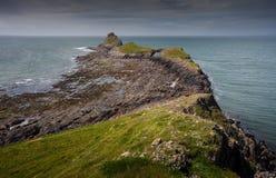 Dżdżownicy głowa na Gower peninsular Obraz Royalty Free