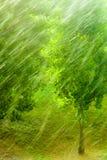 Dżdżysta outside okno zieleni tła tekstura zdjęcia royalty free