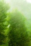 Dżdżysta outside okno zieleni tła tekstura fotografia stock