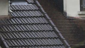 Dżdżysta pogoda, raindrops płynie w dół dachowe płytki, zmiana klimatu, globalny nagrzanie zdjęcie wideo
