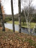 Dżdżysta rzeka w Wczesnej wiośnie Zdjęcia Stock