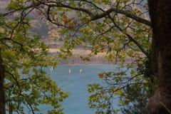 Dżdżysty jeziorny Tsivlos przez gałąź fotografia royalty free