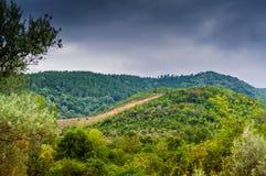 Dżdżysty Pastoralny Krajobrazowy dzień Zdjęcia Stock