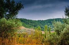 Dżdżysty Pastoralny Krajobrazowy dzień Zdjęcia Royalty Free