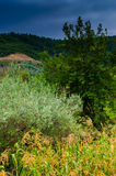 Dżdżysty Pastoralny Krajobrazowy dzień Obrazy Royalty Free