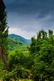 Dżdżysty Pastoralny Krajobrazowy dzień Obraz Stock
