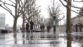 Dżdżysty Southbank zdjęcie wideo