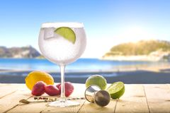 Dżin tonika na plaży zdjęcie stock