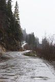 Dżipa ślad Dalton droga blisko Haines, Alaska Fotografia Stock