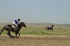 Dżokej jedzie konia podczas końskich ras Zdjęcia Royalty Free