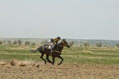 Dżokej jedzie konia podczas końskich ras Obrazy Royalty Free