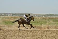 Dżokej jedzie konia podczas końskich ras Zdjęcie Stock