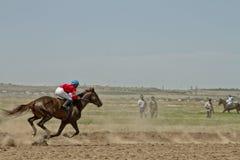 Dżokej jedzie konia podczas końskich ras Fotografia Stock