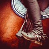 Dżokeja jeździecki but, konia comber i pocięgiel, Zdjęcie Stock