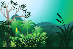 dżungla ilustracji