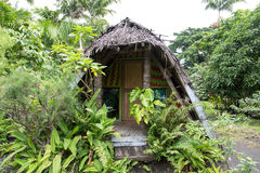 Dżungla bungalow zdjęcie stock
