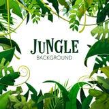 Dżungla liści Tropikalny tło Drzewka Palmowe Plakatowi royalty ilustracja