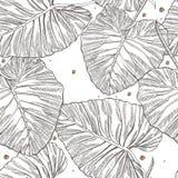 Dżungla opuszcza bezszwowego wektorowego kwiecistego deseniowego tło Tropikalna palma opuszcza tło Wektorowa ilustracja w modnym Zdjęcie Stock