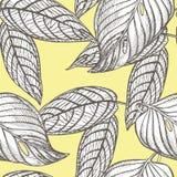 Dżungla opuszcza bezszwowego wektorowego kwiecistego deseniowego tło Tropikalna palma opuszcza tło Wektorowa ilustracja w modnym Zdjęcia Royalty Free
