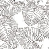 Dżungla opuszcza bezszwowego wektorowego kwiecistego deseniowego tło Tropikalna palma opuszcza tło Wektorowa ilustracja w modnym Zdjęcie Royalty Free